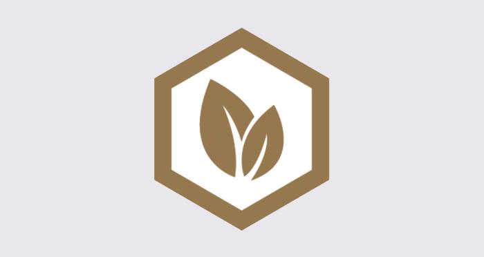 Composite Prime HD Deck 3D - Golden Oak Composite Decking (2 Pack) - Descriptive 4