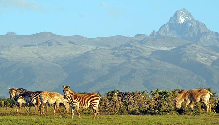 Eden Reforestion Project Kenya 1